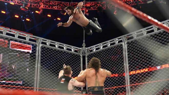 Rollins cage.jpg